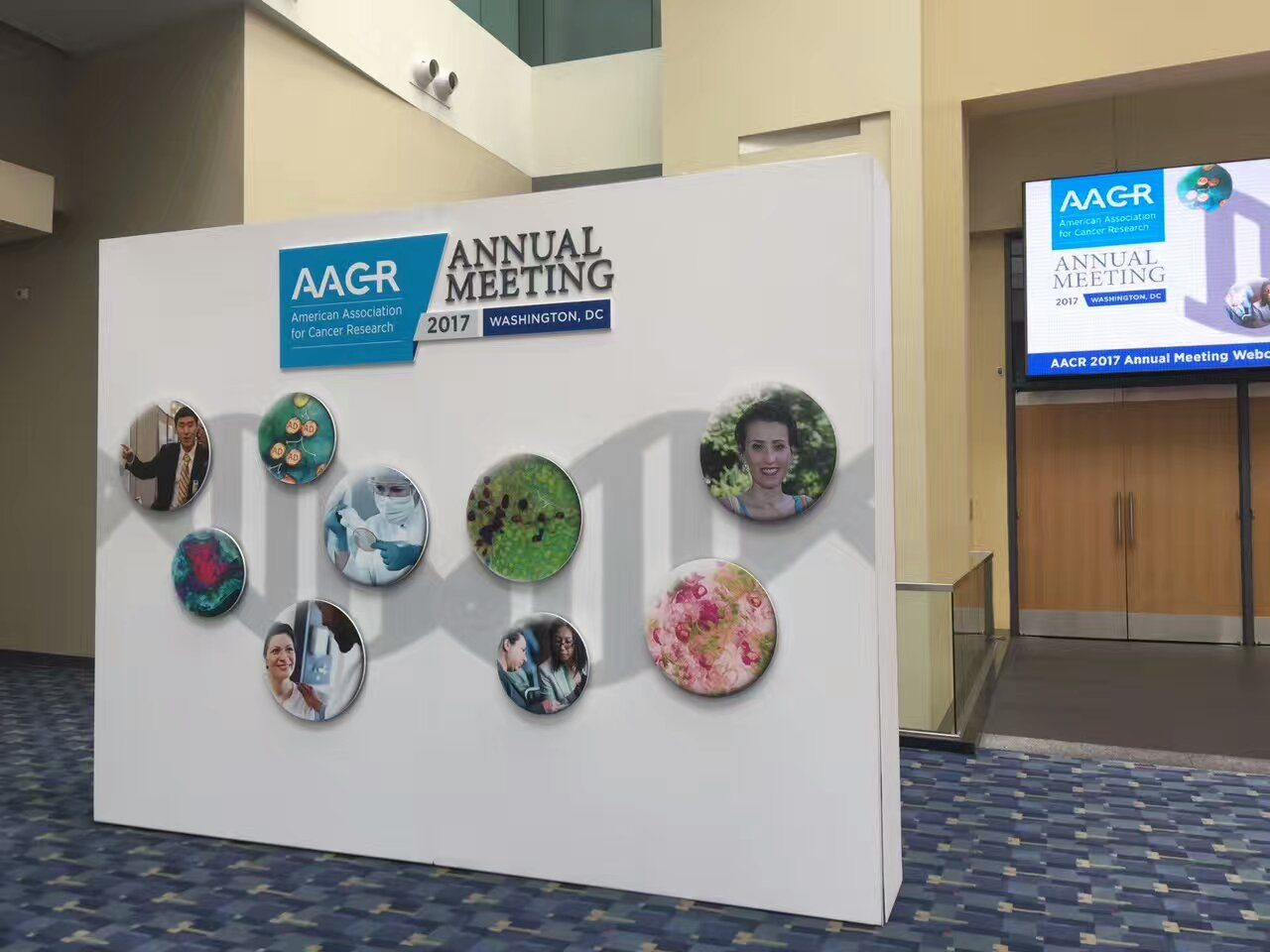 custom-backdrop-banner-for-cancer-research-conference